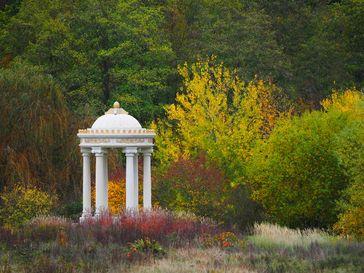 Horsthopteros im Schlosspark Dennenlohe Bild: Schloss Dennenlohe Fotograf: Christa Bartl Focriba