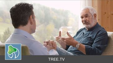 TREE.TV mit David Höner