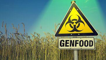 Genetisch veränderte Pflanzen und Tiere: Erzeugen vermutlich genetisch veränderte Menschen (Symbolbild)
