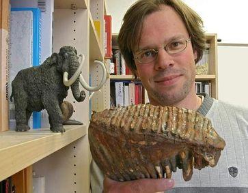 Dr. Thomas Tütken mit dem ca. 30.000 Jahre alten Backenzahn eines Mammuts. Anhand des Zahnschmelzes lässt sich die Körpertemperatur Tieres auf plus/minus zwei Grad genau bestimmen. Bild: Frank Luerweg, Universität Bonn