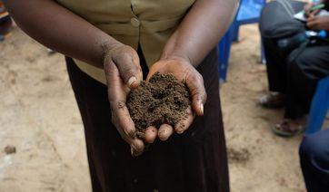 Auf einem Biobauernhof nahe Dar es Salaam, den die ECOSOLA-Wissenschaftler während ihres Kick-off-Workshops in Tansania besuchten, dient Fledermaus-Guano als wertvoller Dünger für die Pilzzucht. Quelle: Kilian Köbrich / Universität Oldenburg (idw)