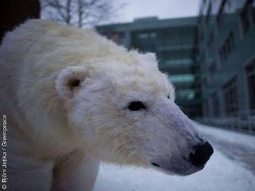 Bild: Björn Jettka / Greenpeace