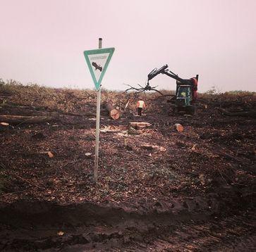 Rodungsarbeiten im Hambacher Forst 2015, LSG-Schild im Vordergrund (Symbolbild)