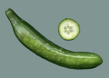 Frucht der Salat- oder Schlangengurke, ganze Ansicht und Querschnitt