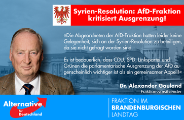 Syrien Resolution der AfD