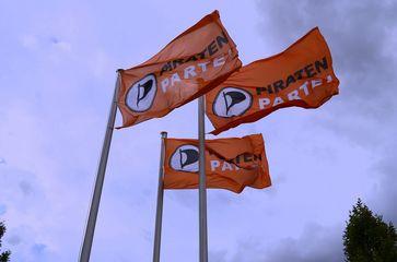 Flaggen der Piratenpartei