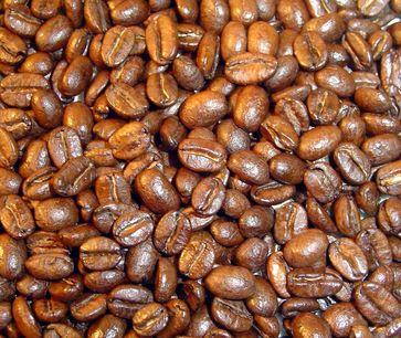 Kaffeebohnen Quelle: DIfE (idw)