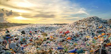 Wenn Plastikmüll wie hier auf den Malediven auf einer Müllkippe deponiert wird, ist es schon gut gelaufen. Dann landen die Kunststoffe wenigstens nicht in den Ozeanen. Quelle: © Mohamed Abdularaheem / Shutterstock (idw)