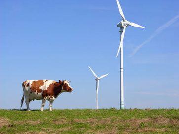 Bild: Bundesverband WindEnergie e.V.