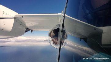 Zählung aus dem Flugzeug. Quelle: Foto: Nino Pierantonio (idw)