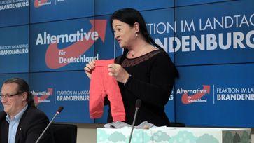 """Die Familienpolitische Sprecherin der AfD-Fraktion Birgit Bessin / Bild: """"obs/AfD-Fraktion im Brandenburgischen Landtag/AfD Fraktion Brandenburg"""""""