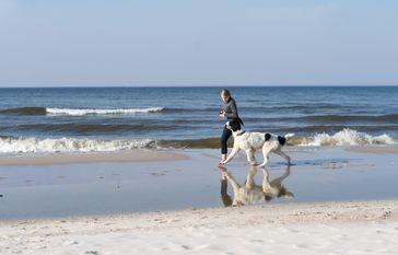 Bild: Shutterstock Fotograf: Foto: BfT/Ingrid Pakats/Shutter