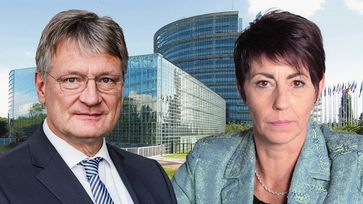 Prof. Dr. Jörg Meuthen und Christine Anderson (2020)