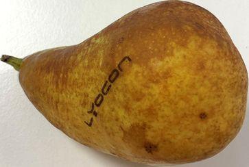 Eine Bio-Birne: Mit Natural Branding verbessert sie ihren Co2-Footprint  Bild: RAYLASE GMBH Fotograf: Quelle Lyocon