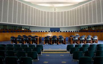 Europäische Gerichtshof für Menschenrechte (EGMR), Innenraum