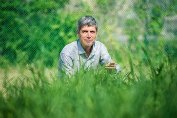 Testete mit einem internationalen Forscherteam die Ertragsmodelle von Weizen: Prof. Dr. Frank A. Ewert vom Institut für Nutzpflanzenwissenschaften und Ressourcenschutz der Universität Bonn. Quelle: Foto: Volker Lannert/Uni Bonn (idw)