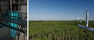 """Der Nachweis der neuen Verbindung """"X"""" gelang laut NATURE sowohl durch Laborversuche als auch durch Freilandmessungen.  Links: Das Labor des IfT in Leipzig. In diesem Strömungsrohr wurden unter Atmosphärendruck jene chemischen Prozesse untersucht, die zur Bildung des neue Oxidationsmittels und zur Umsetzung zu Schwefelsäure führen.  Rechts: Diese Verbindung kann in der Atmosphäre hauptsächlich durch biogene Emissionen entstehen. Wissenschaftler der Universität Helsinki konnten die Verbindung auch an der Forschungsstation Hyytiälä über den Wäldern im Süden Finnlands nachweisen. Quelle: Foto: Tilo Arnhold/IfT (links) & Juho Aalto/Universität Helsinki (rechts) (idw)"""