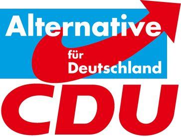 AfD CDU Koalition