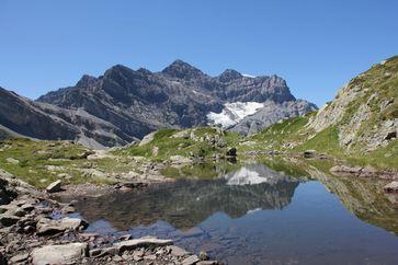Berglandschaft im Schweizer Wallis: Vielfältige Bodentypen sorgen hier, wie auch in anderen Gebirgen weltweit, für einen vergleichsweise großen Artenreichtum an Wirbeltieren. Quelle: Copyright: Susanne Fritz (idw)