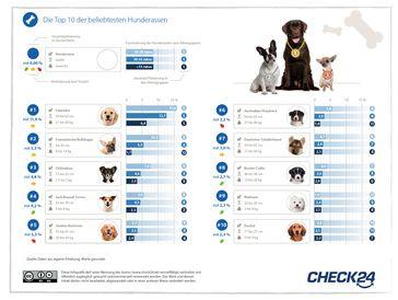"""Beliebteste Hunderassen Bild: """"obs/CHECK24 GmbH"""""""