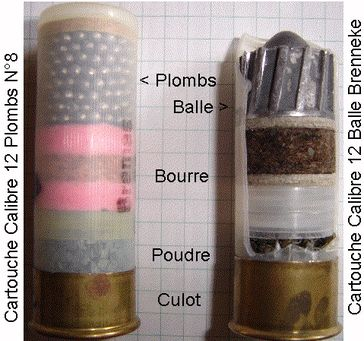 Vergleich zwischen einer Schrotpatrone und einem Flintenlaufgeschoss (Symbolbild)