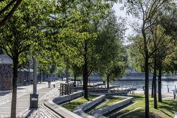 """Ein gutes Stadtklima benötigt ein wesentliches breiteres Sortiment an Zukunftsbäumen, Bild: """"obs/Bund deutscher Baumschulen (BdB) e.V./Ferdinand Graf Luckner"""""""
