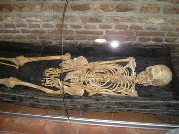 Skelett (Symbolbild)