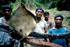 Unter der Regierung Taib haben die Penan unzählige Blockaden gegen die Zerstörung ihres Waldes organisiert. Bild: Andy Rain/Nick Rain/Survival