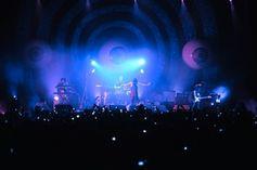 """Die """"Yeah Yeah Yeahs"""" auf der Bühne in Aktion. Bild: yeahyeahyeahs.com"""