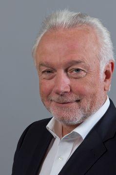 Wolfgang Kubicki, 2013