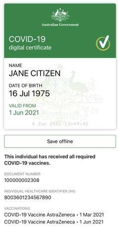 Impfausweis (Symbolbild)
