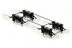 Prototyp der insektengroße Drohne.