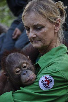 Dr. Signe Preuschoft mit Orang-Utan-Waisenkind Bild: BOSF, VIER PFOTEN