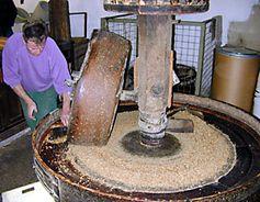 Quetschen von Walnüssen im Kollergang (Ölmühle)