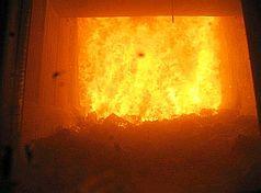 Müllverbrennungsofen: Nanopartikel bleiben unversehrt (Foto: ETH/Stark)