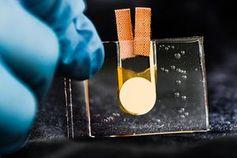Wärmetransistor: Er verspricht interessante Anwendungen.Bild: Thor Balkhed