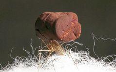 Mosquito balanciert einen Klumpen aus Goldschaum.