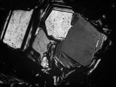 Mikroskopische Spezialaufnahme zeigt Borkarbid-Kristalle.