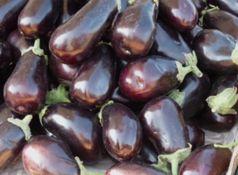 Gen-Auberginen dürfen in Indien nicht angebaut werden. Bild: pixelio/D. Schütz