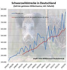 """Die Jagd provoziert erheblichen Reproduktionsdruck. Die Jagdstrecken steigen seit Jahrzehnten kontinuierlich.  Bild: """"obs/Wildtierschutz Deutschland e.V."""""""