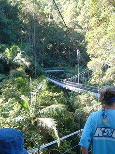 Dschungelcamp: Ein Foto vom Drehort