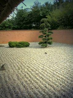 Steingarten: Kaum etwas kann darin leben... (Symbolbild)