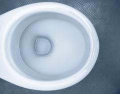 Toilette: makellos sauber auch ohne Wasserspülung.