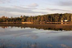 Goldenes Lappland: Das weiche Herbstlicht lässt die Wälder in goldenen Farben erstrahlen. Bild: Wolfgang Weitlaner