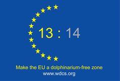 WDCS Report enthüllt: Delfinhaltung mit EU-Gesetzgebung nicht vereinbar