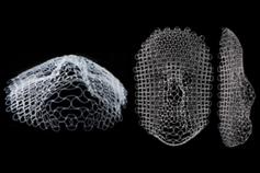 Aus dem Maschennetz wird menschliches Gesicht.