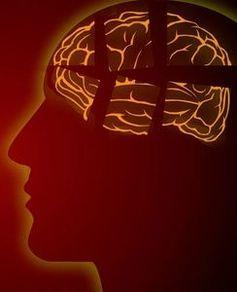 Gehirnbereiche bei Gehörverlust neu organisiert.