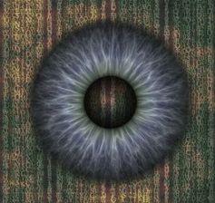 Auge: Instagram-App ermöglicht Stalking.