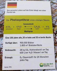 CO2 und O2 befinden sich in einem Lebenskreislauf: Wer CO2 reduziert, reduziert das Leben auf dem Planeten. Steigt der Gehalt an CO2, gibt es mehr Leben (Symbolbild)