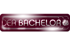"""Der Bachelor (englisch """"Junggeselle"""") ist eine Fernsehshow, die bei RTL ausgestrahlt wird. In ihr soll ein attraktiver Junggeselle eine Lebenspartnerin finden."""